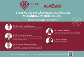 think tank virtual valvulas cardiacas